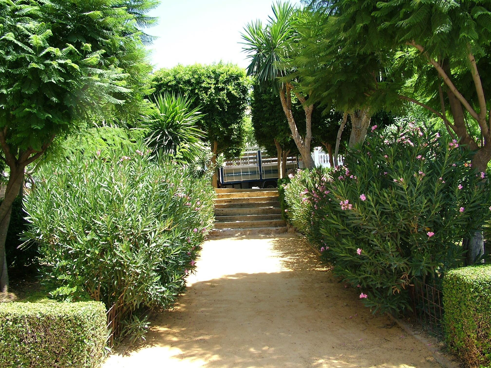 Ayuntamiento de berja parques y jardines for Jardines y parques