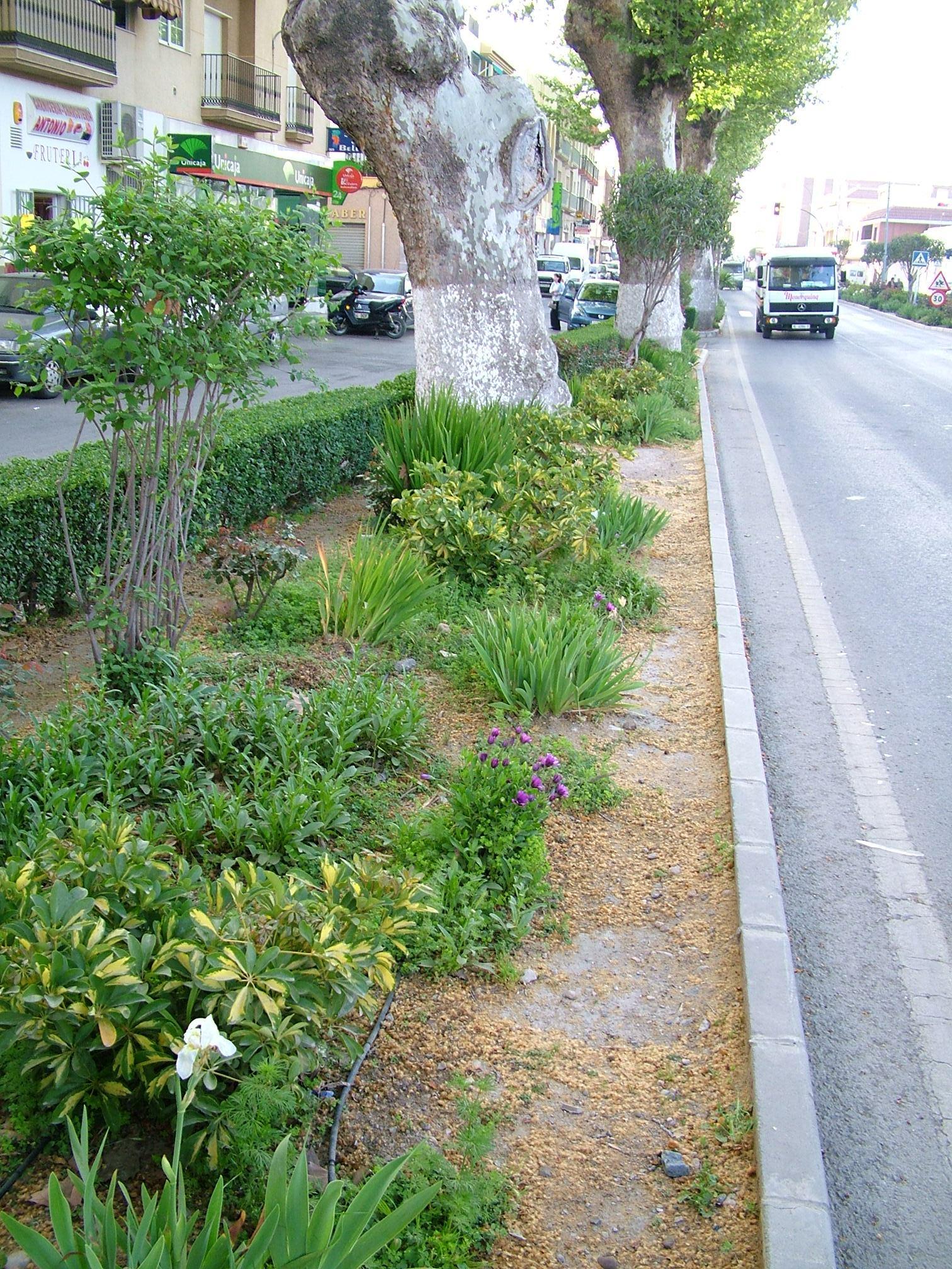 Ayuntamiento de berja parques y jardines for Parques y jardines