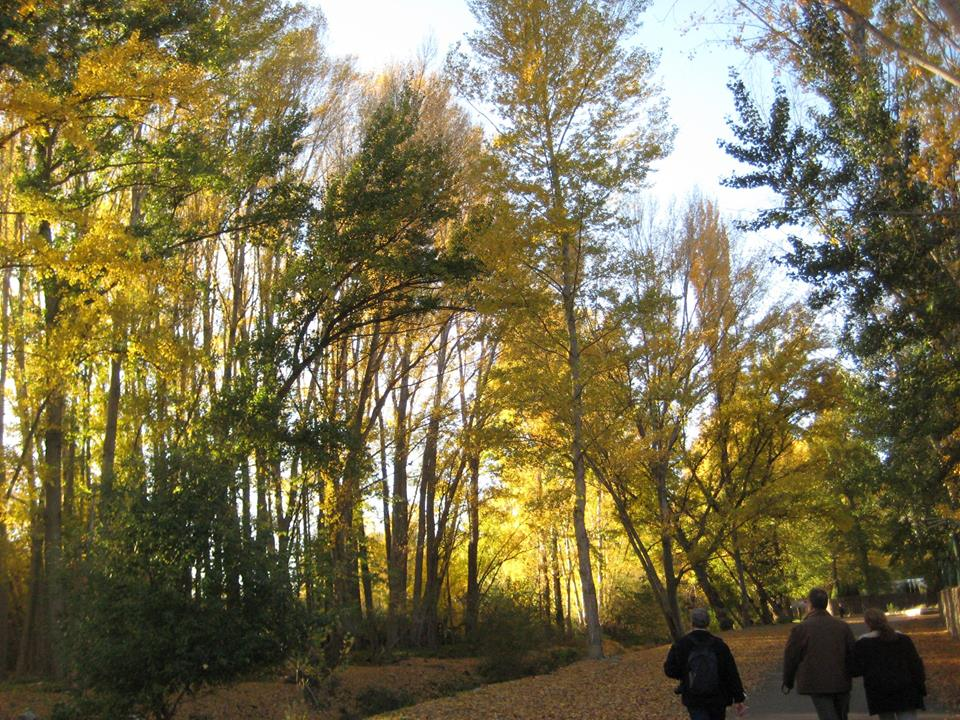 Camino de Benecid. Fondón © Fotografía M Navarro
