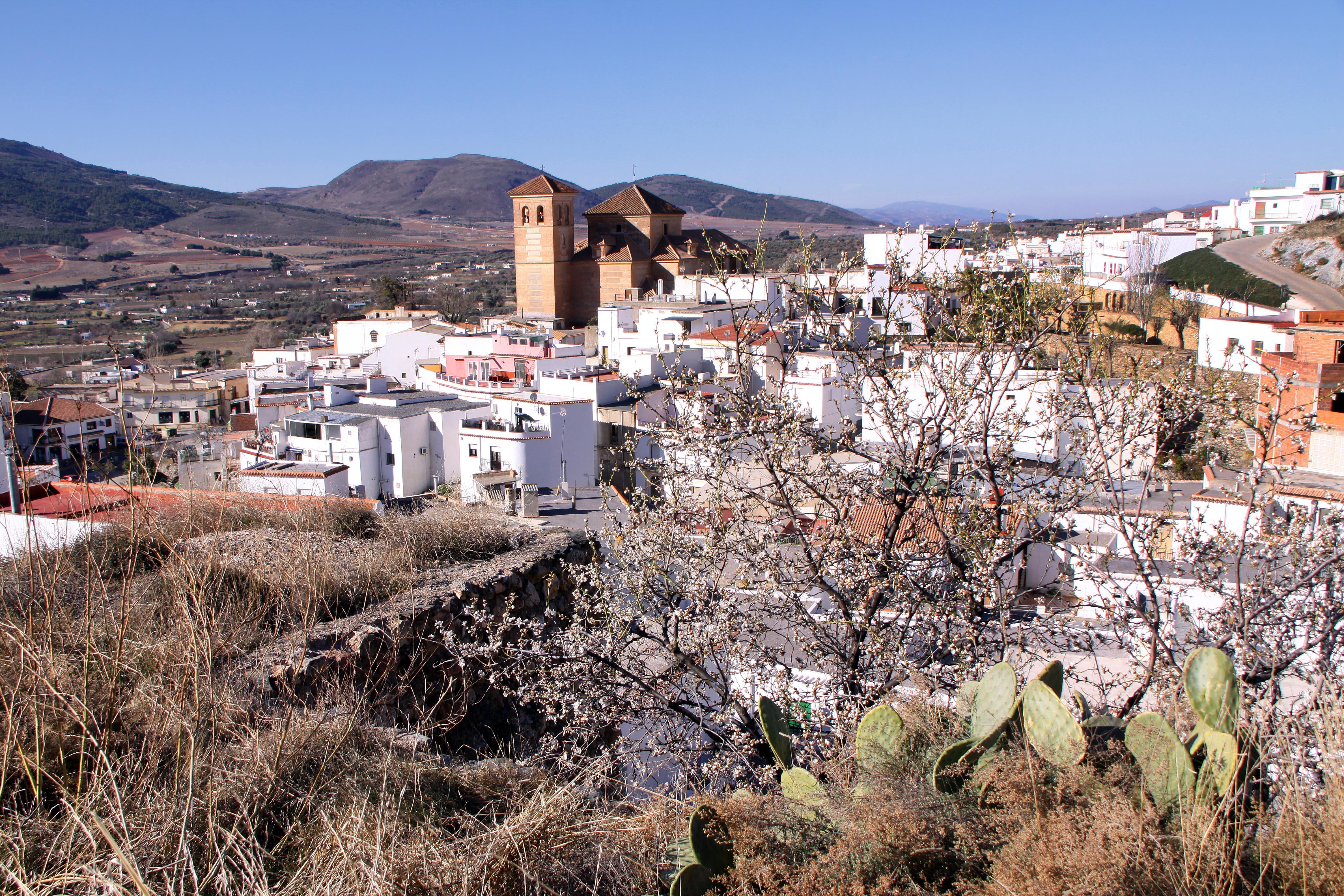 Alcazaba islámica y al fondo la trama urbana de Laujar de Andarax. © Fotografía: Pako Manzano