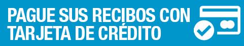 Pago con Tarjeta de Crédito por TPV