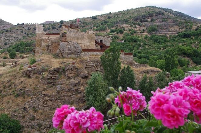 Vista del castillo de Bacares ©José Ángel Fernández