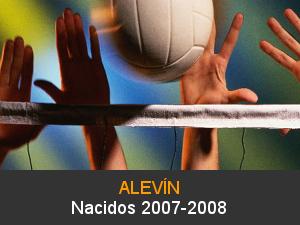 Voleibol Alevín