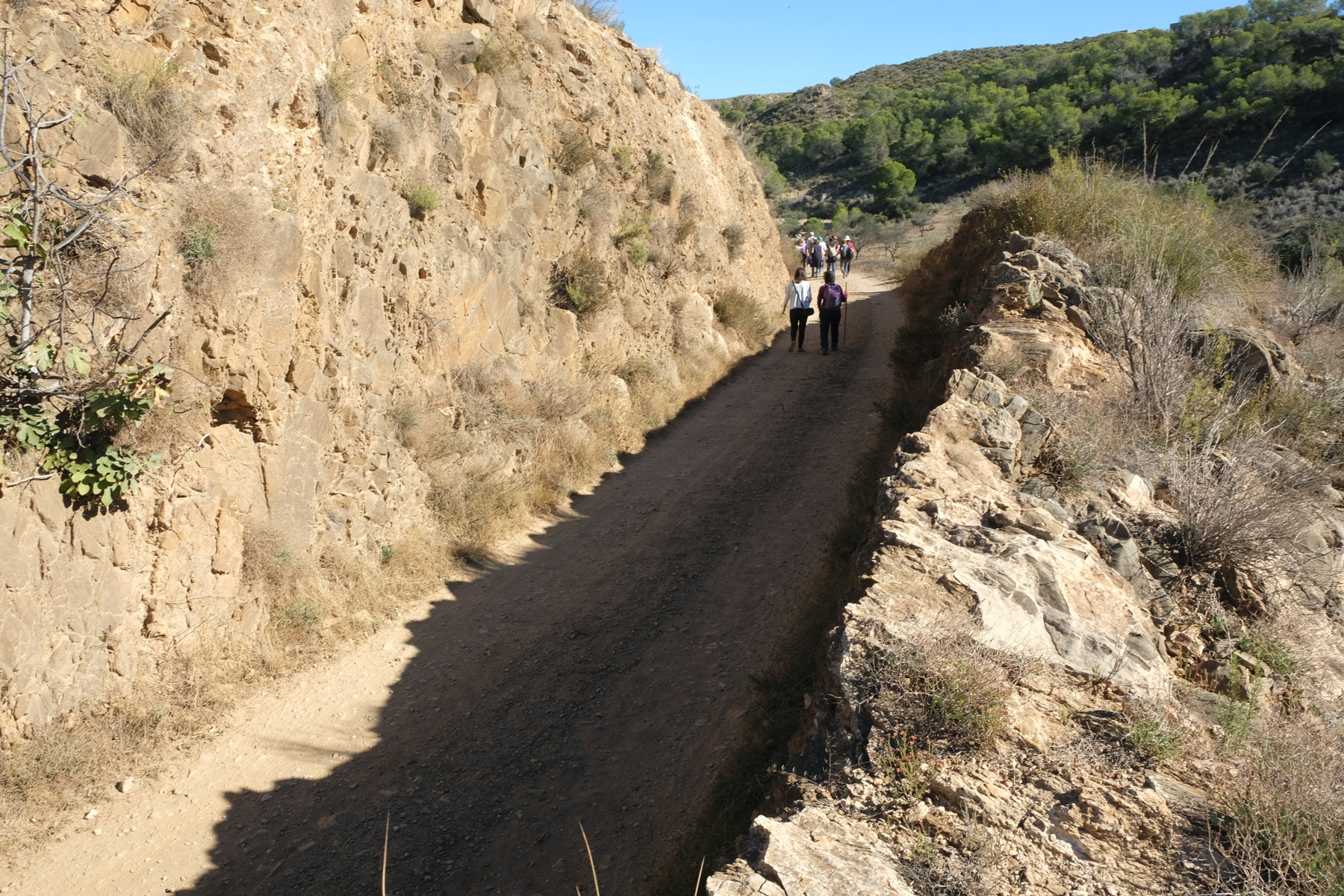 Antigua trinchera del ferrocarril minas de Bédar © Paco Bonilla