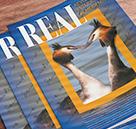 Revista Real