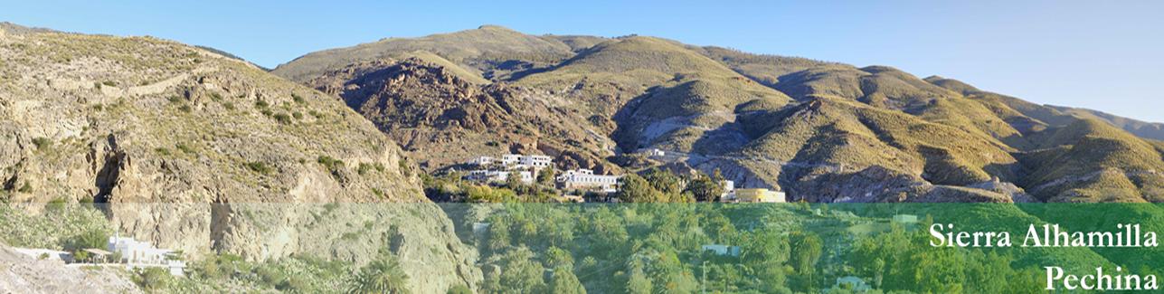Sierra Alhamilla - Pechina